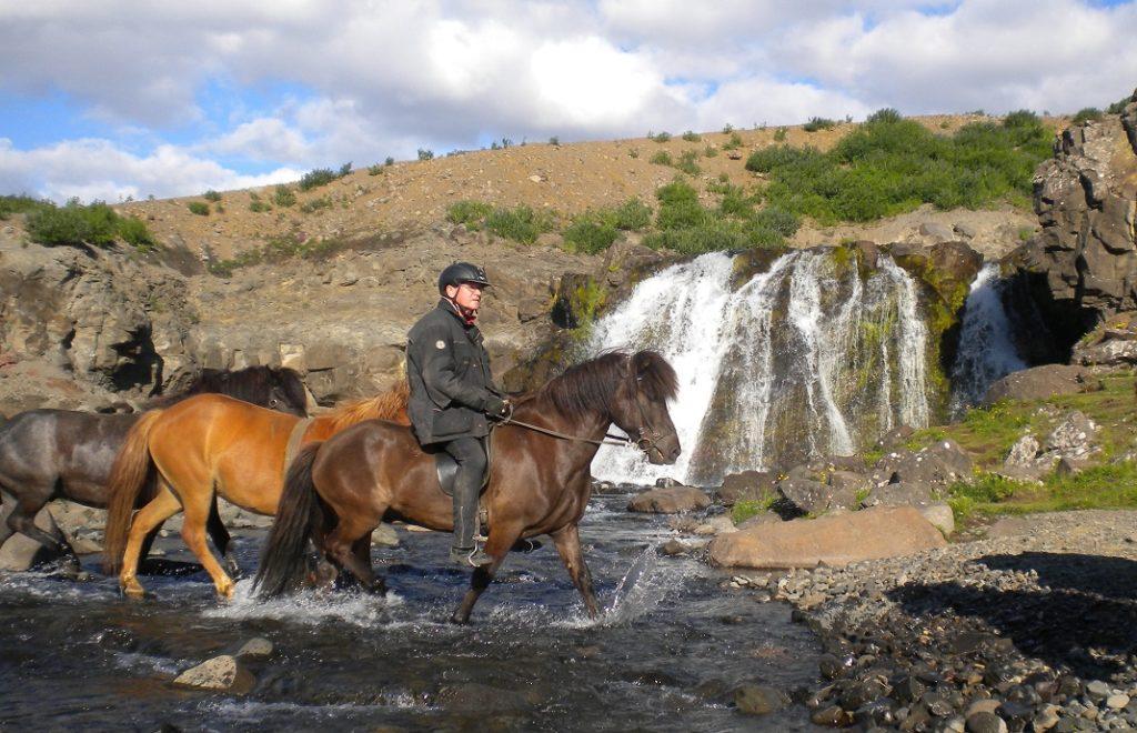I tølt på Island 1