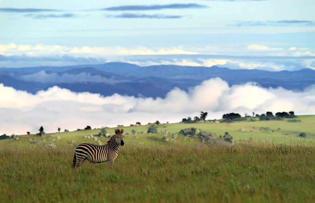 Reiser til Malawi