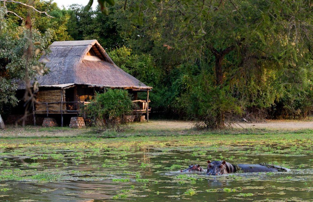 Mfuwe Lodge 4
