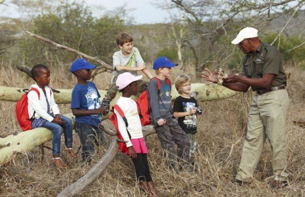 Afrikansk familieeventyr 2
