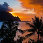 Bryllupsreise på Hawaii 2