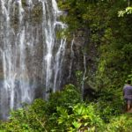 Bryllupsreise på Hawaii 3