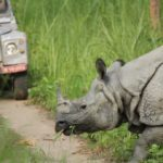 Chitwan nasjonalpark 3