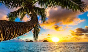 Reiser til Hawaii