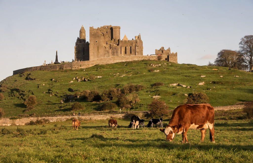 Cashel Castle,  Co Tipperary