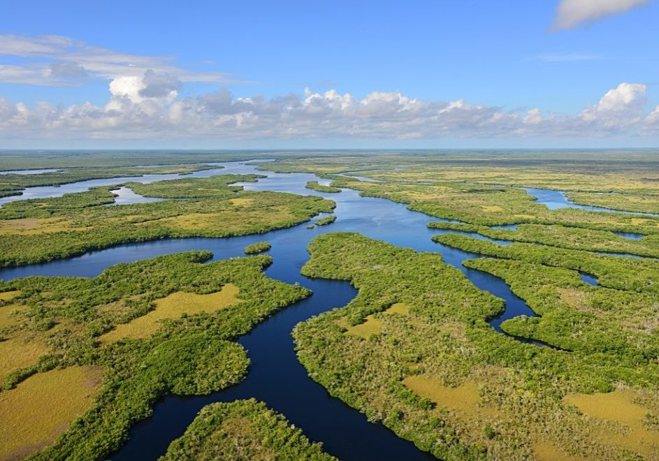 1.Florida Everglades_aerial (Peter W. Cross)