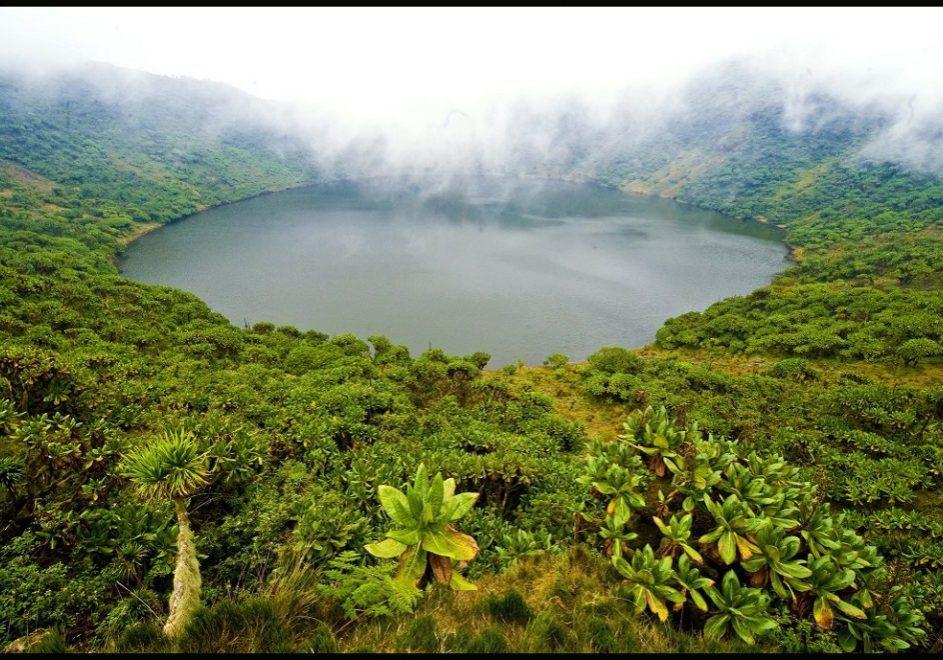 Fottur til Mount Bisoke 1