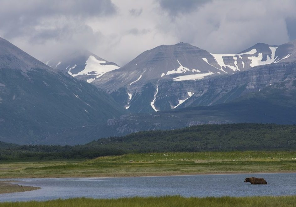Katmai nasjonalpark 4
