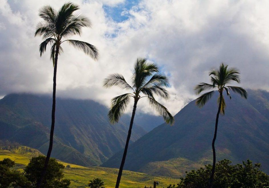Maui 1