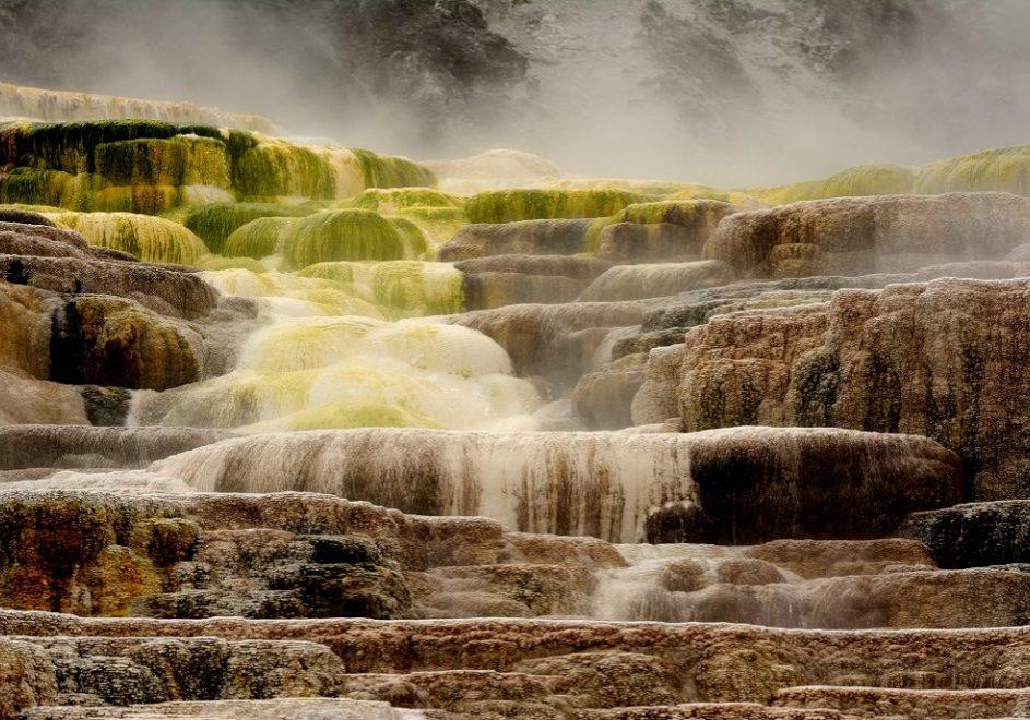 Yellowstone nasjonalpark 5