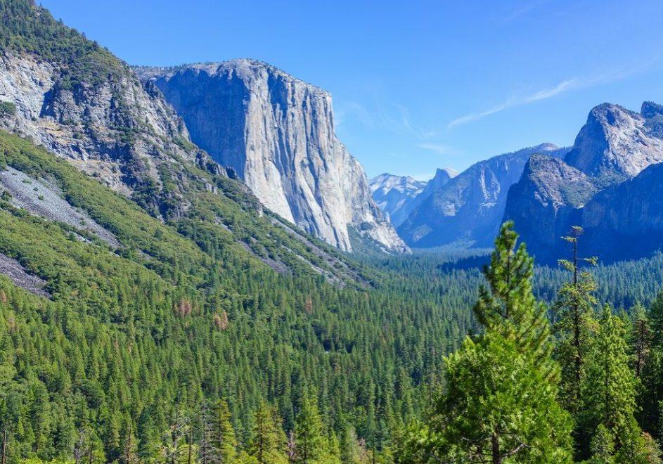 Yosemite nasjonalpark 4